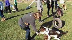 Benito Menni CASM segueix donant suport a les terapies assistides amb gossos