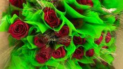 Celebrem Sant Jordi i Sant Benito Menni