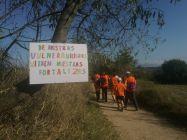Rècord de participants a la caminada per la salut mental de Granollers