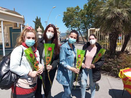 Roses a Sant Boi