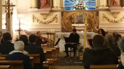Concert d'arpa, flauta travessera i viola.